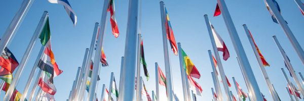 UN-COP22-flags